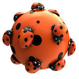 Ladybug's world Royalty Free Stock Photography