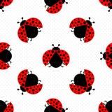 Ladybug seamless Stock Image