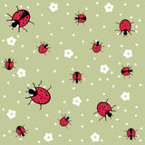 Ladybug seamless floral pattern Stock Images