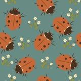 Ladybug  seamless pattern Stock Images