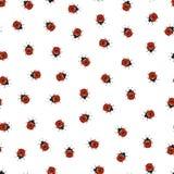 Ladybug seamless pattern. Hand-drawn ladybug. Royalty Free Stock Photos
