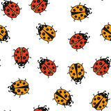 Ladybug seamless pattern. Vector illustration. Royalty Free Stock Photography