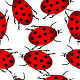 Ladybug seamless pattern Royalty Free Stock Photos