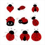 Ladybug. Set illustration isolated on white stock illustration