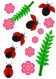Ladybug set isolated Royalty Free Stock Image