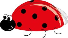 Ladybug Royalty Free Stock Photography