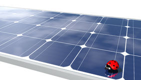 Ladybug on solar panels Stock Images