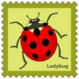 Ladybug stamp Royalty Free Stock Image