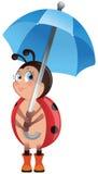 Ladybug with umbrella Royalty Free Stock Images