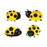 Ladybug vector collection design royalty free illustration