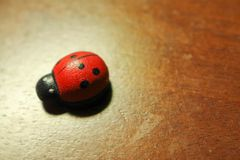 Ladybug wood background Stock Images