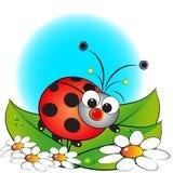 Ladybug y flores - ilustración de los cabritos Fotografía de archivo