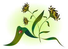 Ladybug on yellow flower. EPS10 vector illustration.  Royalty Free Stock Images