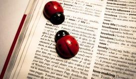 Ladybugs σε ένα λεξικό που μεταφράζει την αγάπη λέξης από αγγλικά στα ιταλικά Στοκ Εικόνα