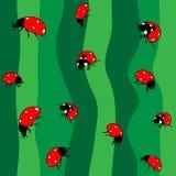 Ladybugs σε πράσινο. Άνευ ραφής ελεύθερη απεικόνιση δικαιώματος