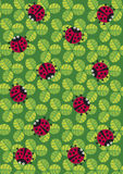 ladybugs σύσταση Στοκ φωτογραφία με δικαίωμα ελεύθερης χρήσης