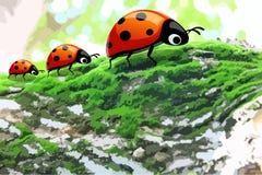 3 ladybugs на дереве Стоковое Фото