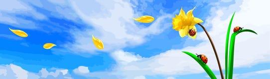 Ladybugs на цветке под голубым небом Стоковое Изображение RF