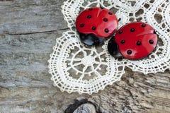 2 ladybugs на шнурке Стоковые Фотографии RF