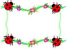 ladybugs рамки цветков красные Стоковые Изображения RF