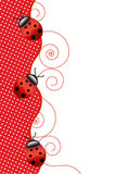 Ladybugs. Vector red background with ladybugs royalty free illustration