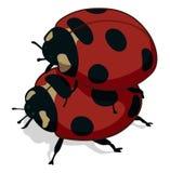 ladybugs иллюстрация вектора