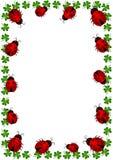 Рамка границы Ladybugs с клеверами Стоковое Изображение RF