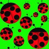 ladybugs ilustração do vetor