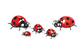 ladybugs vector illustratie