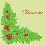 ladybugs Imagen de archivo libre de regalías