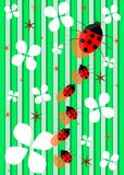 Ladybugs background. Illustration representing a family of ladybugs walking on an abstract background made with stripes and flowers Royalty Free Stock Images