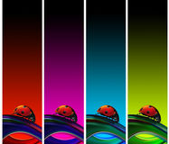 Ladybugs banners. Set of four banners with ladybug and multicolored background Royalty Free Stock Photo