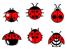 Ladybugs and beetles icons set Stock Photo