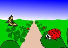 Ladybugs, blue sky and many shamrocks Royalty Free Stock Photography