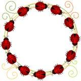 Ladybugs Border Frame Stock Photography