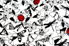 Ladybugs and Butterflies. In black and red on a white background Royalty Free Stock Photo