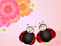 Ladybugs couple on flowers. Illustration of ladybugs couple on flowers Royalty Free Stock Images