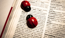 Ladybugs on a dictionary translating the word love from english to italian Stock Image