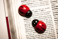 Ladybugs on a dictionary translating the word love from english to italian Stock Photography