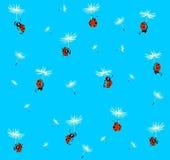 Ladybugs fly Royalty Free Stock Photos