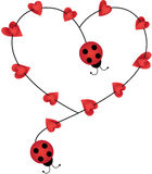 Ladybugs forming heart shape Royalty Free Stock Photos