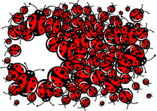 Ladybugs frame Royalty Free Stock Photo