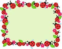 Ladybugs frame Royalty Free Stock Photos