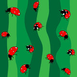 Ladybugs on green. Seamless Stock Image