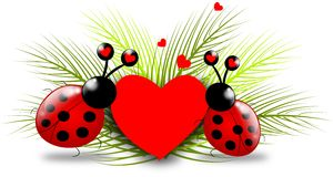 Ladybugs with heart Royalty Free Stock Images