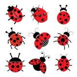 Ladybugs illustration  on white background Stock Photos