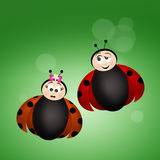 Ladybugs in love Royalty Free Stock Photos