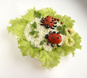 The ladybugs made of tomatoes royalty free stock photos