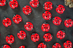 Ladybugs magnets Stock Photo