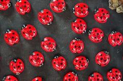 Ladybugs magnets Stock Photo